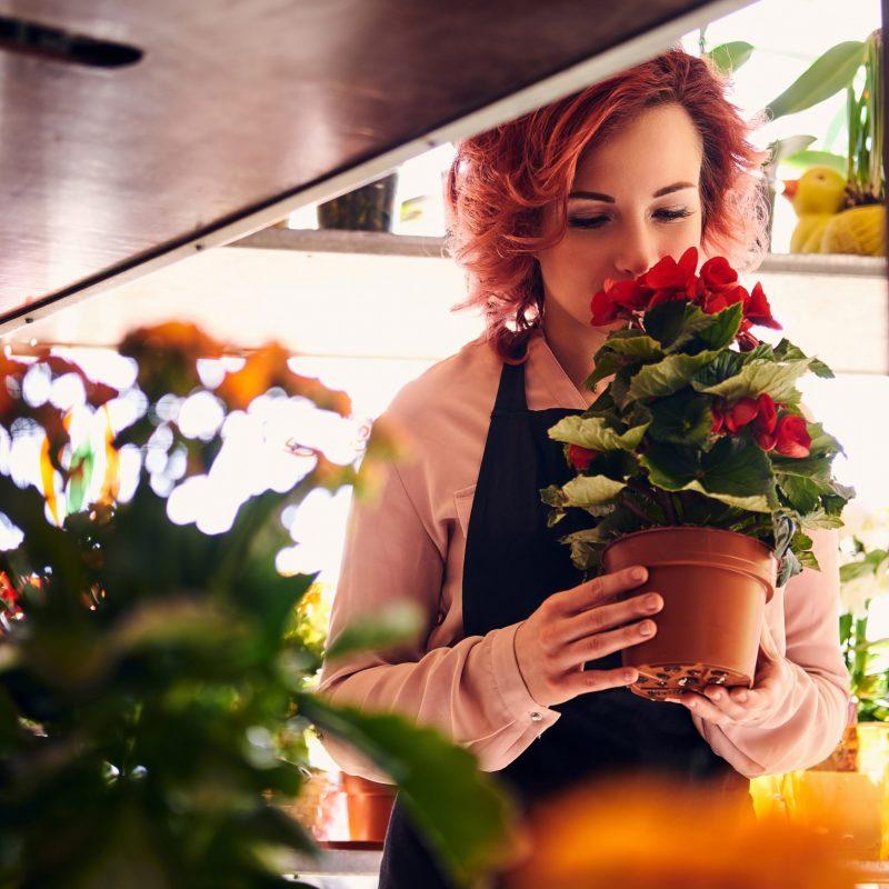 Beautiful redhead female florist wearing uniform working in flower shop.